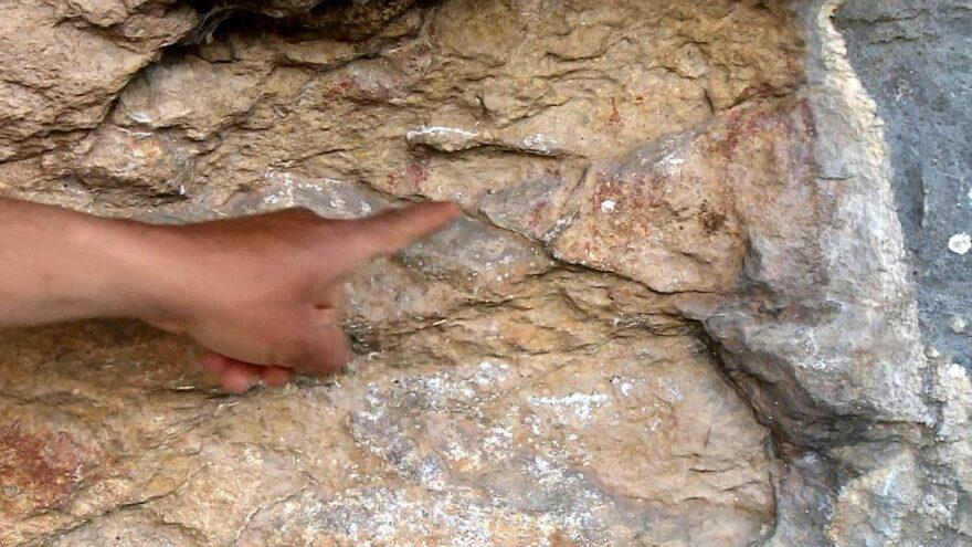 Mersin 8 bin yıllık kaya resmi