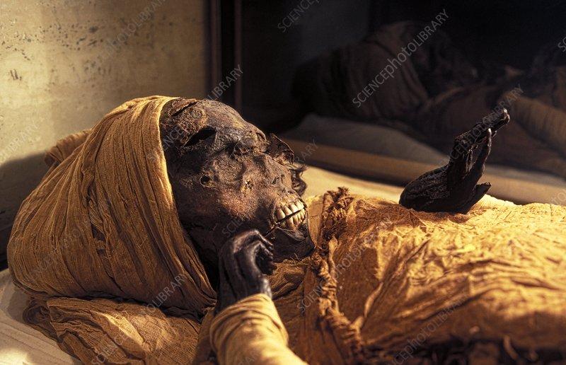 II.Seqenenre Taa'nın mumyası ilk olarak 1880'lerde keşfedildi. O zaman bile, arkeologlar firavunun yüzünde birkaç belirgin yara fark ettiler. (Fotografi: Sahar Saleem)