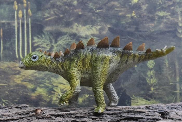 Dünyanın en küçük Stegosaurus bulundu