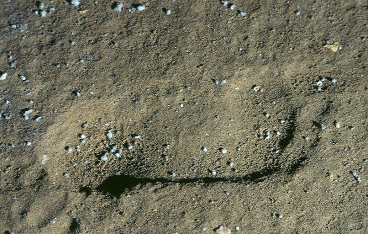 Burgos mağarasında ayak izleri