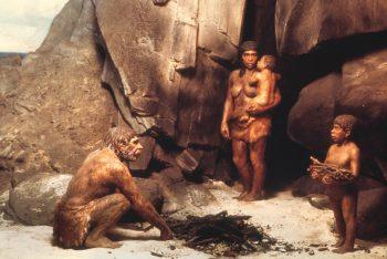 Neandertallerin Ölümünden Homo Sapiensler Suçlu Olmayabilir?