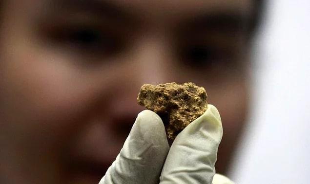 Dünyanın-en-eski-peyniri-Mısırda-bulundu