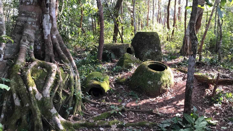 Laos kavonazlar ovası