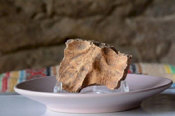 """İranlı arkeolog Behrouz Bazgir, İran'ın batısındaki Kaldar mağarasında bulunan bir insan fosilinin Homo sapiens'in göçündeki """"kayıp halkanın"""" bir parçası olduğunu söyledi. Kaynak: Tehran Times"""