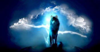 Türk mitolojisinde kurt totemi
