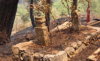 Senir Mahallesinde bulunan 800 yıllık mezarlık orman yangında zarar gördü. Fotoğraf DHA