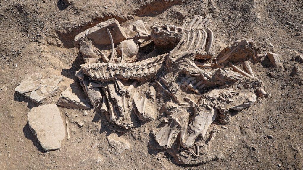 Çavuştepe Kalesi'nde ortaya çıkarılan Urartulu mezarında şimdiye kadar rastlanılmamış bir hazneli kandille karşılaşıldı. Foto AA