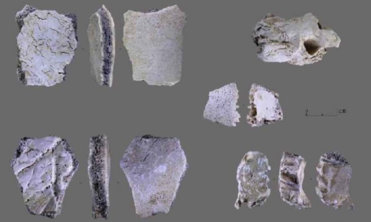 Çin'de 32 bin yıl öncesine tarihlenen insan kafatası fosili bulundu