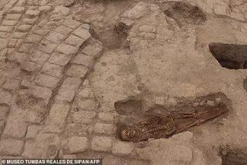İnka dönemi Wari kültürü insan kurbanları